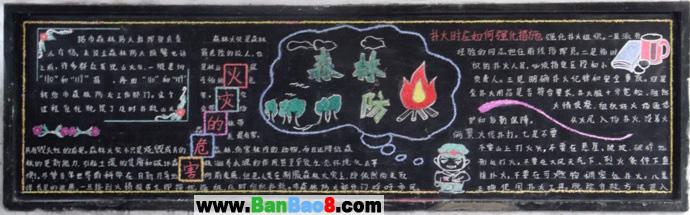 森林防火黑板报设计图:火的危害